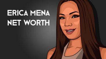 Erica Mena net worth